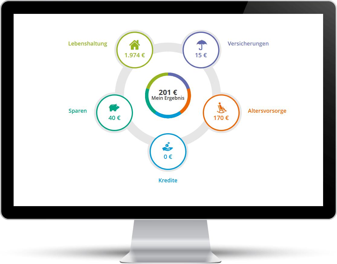 Screenshot: In der Budgetanalyse können Sie fünf Ausgabenkategorien checken lassen.